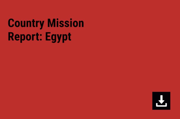 Country Mission Report: Egypt