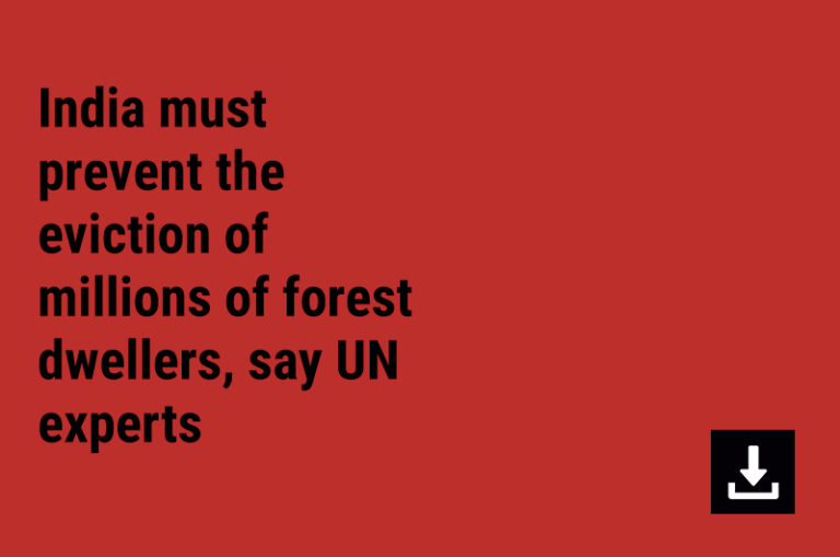 India must prevent the eviction of millions of forest dwellers, say UN experts
